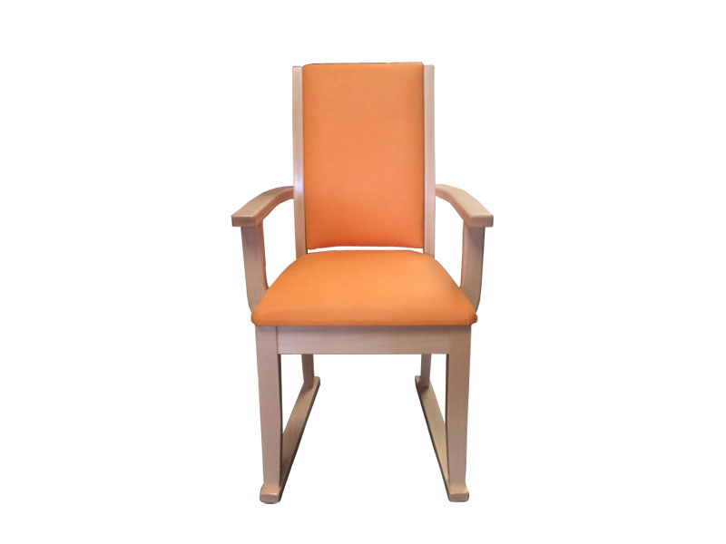 Lucan Dining Chair Main